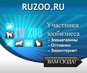 Форум зоологического бизнеса