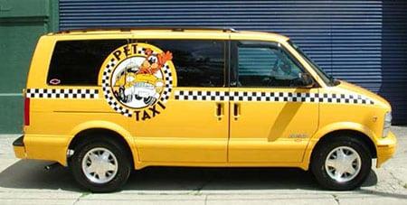 Такси для собак?