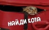 Игра найди кота (в соц. сети одноклассники)
