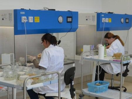 Laboratory42