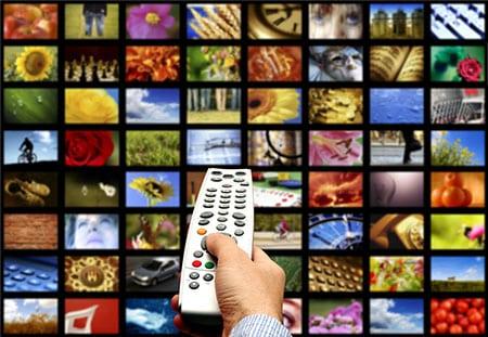 Исследование зарубежного анималистического телевизионного продукта в телеэфире