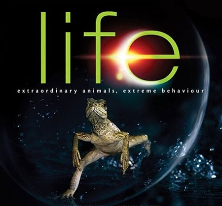 life-discovery-channel
