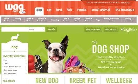 web-dizayn-dlya-internet-zoomagazina