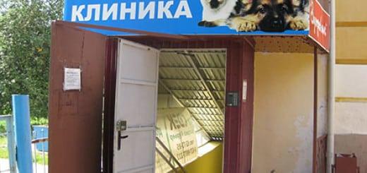 kak-otkryt-veterinarnuyu-kliniku00