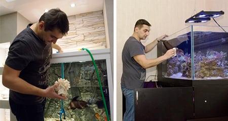 Зообизнес уход за рыбками в аквариуме