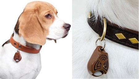 Уникальное средство от клещей и блох для собак – TickLess