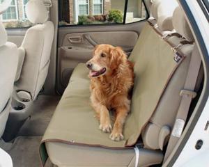 Безопасность собак в авто