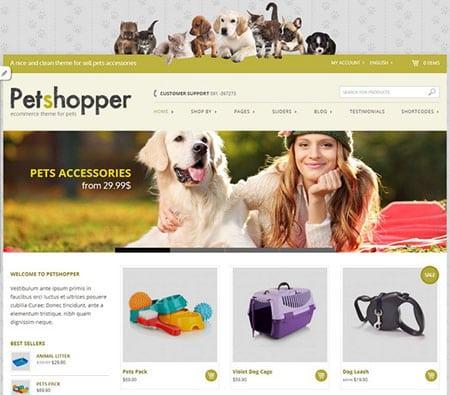 Интернет маркетинг как инструмент для продвижения сайта зоомагазина