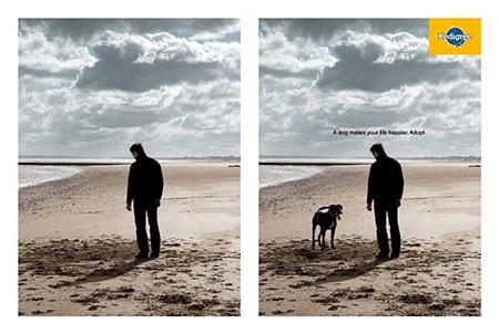 Собака сделает твою жизнь счастливее: социальная реклама