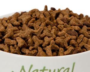 Бактериологическое качество сухих кормов для непродуктивных животных