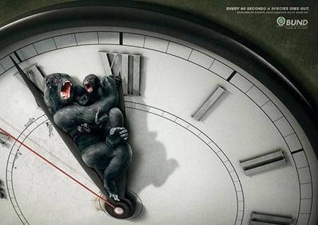 Представление в социально экологической рекламе проблем вымирания видов животных