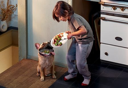 creative-ads-part-i-bad-dog (1)