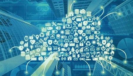 Использование internet-технологий предприятием зообизнеса