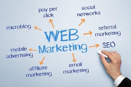 internet-marketing-dlya-sovremennogo-predpriyatiya-zoobiznesa