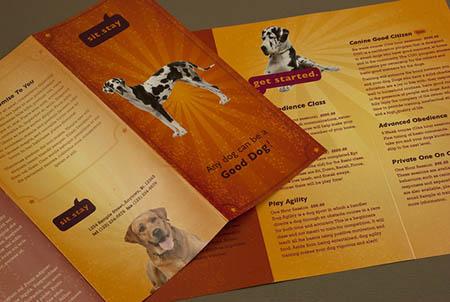 Буклет и брошюра для зообизнеса