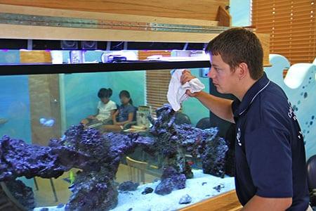 zoobiznes-ukhod-za-rybkami-v-akvariume-1